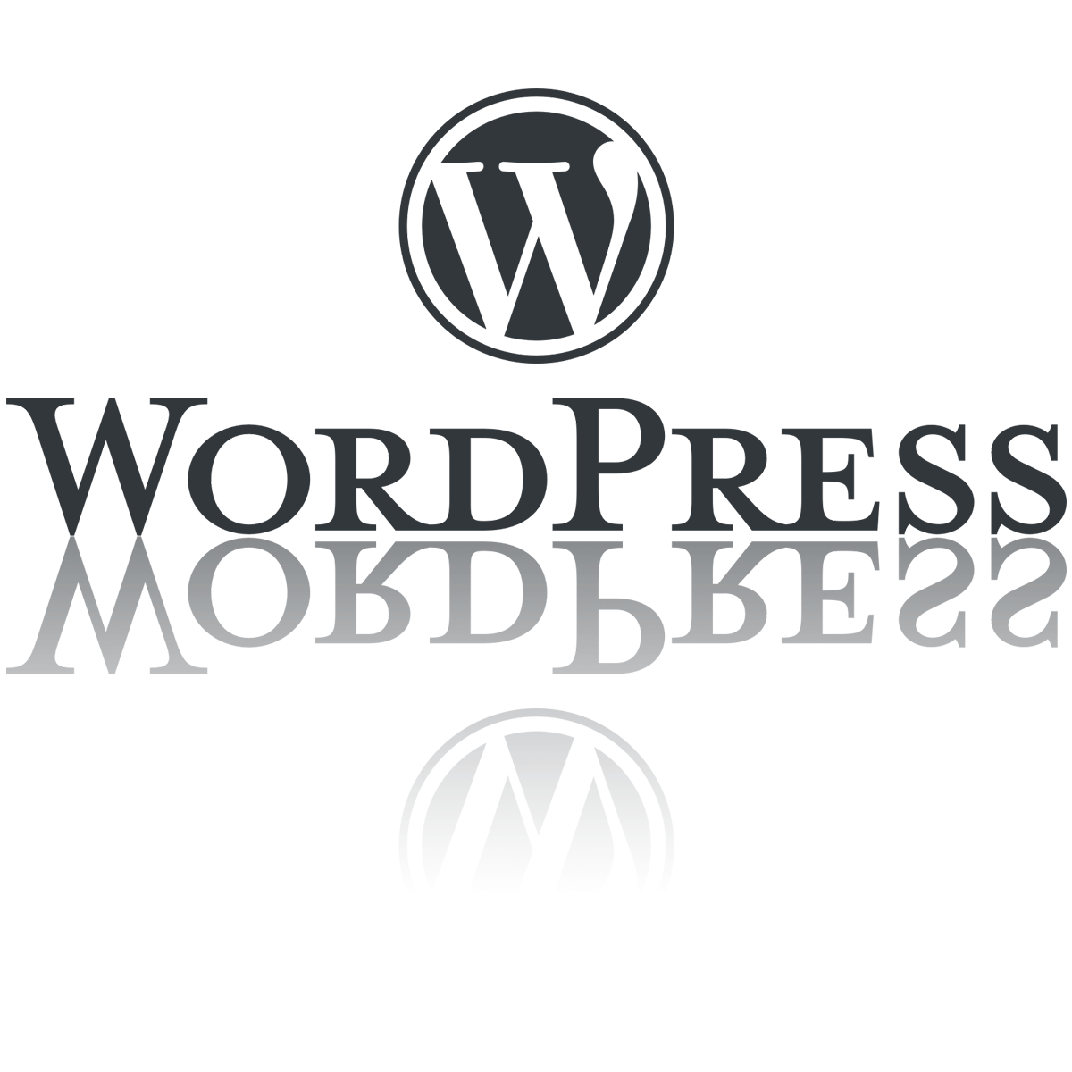 Webdesigner WordPress